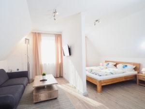 Apartment 8 Wohn-/Schlafraum